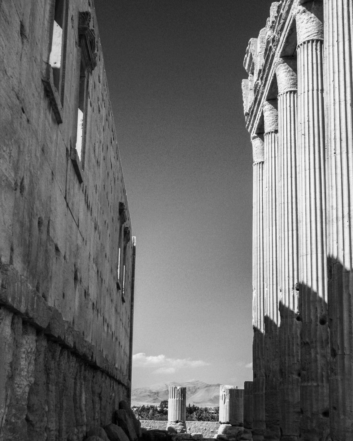 Palmyra III