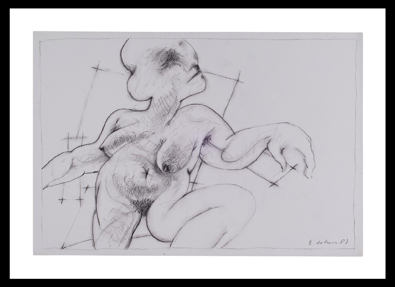 Tinta y Carboncillo (1987) - Eduardo Cohen