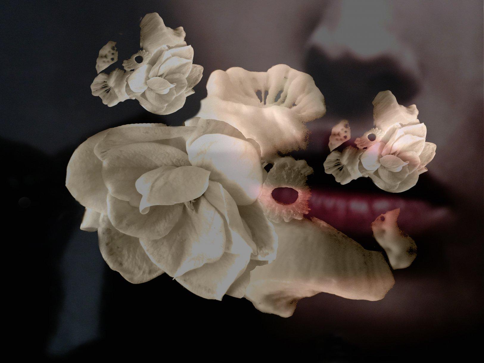 Extrañamiento VV (2020) - Elena Caja