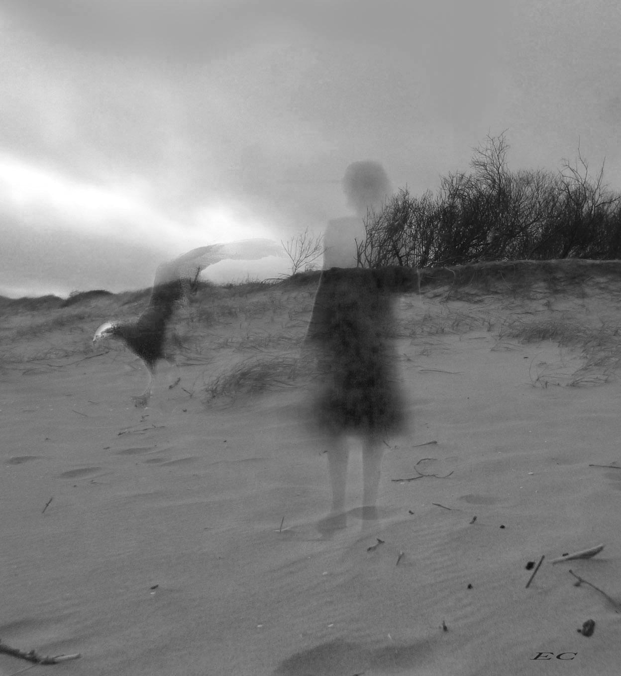 Lenguaje de los sueños VII (2020) - Elena Caja
