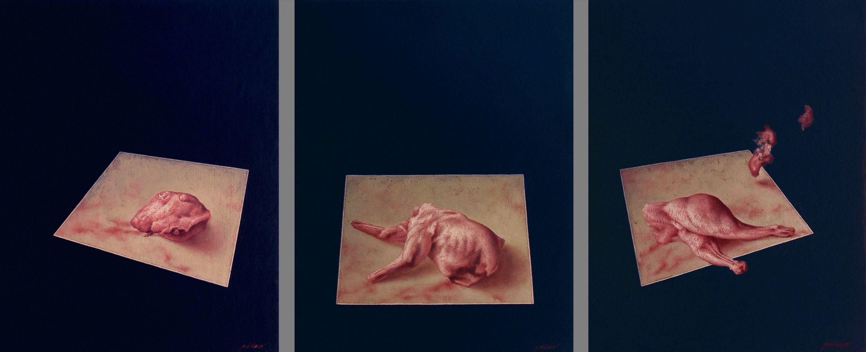 Bgón. Exto. Conejo (tríptico) (2011) - José Viera