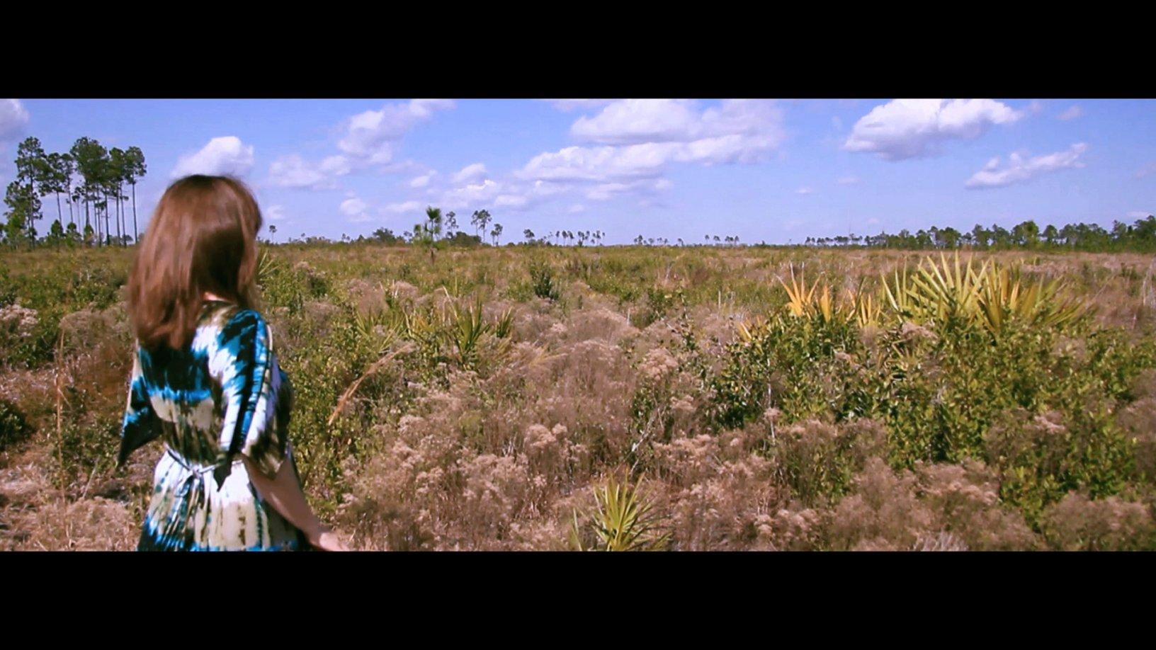 Walking Prairie (2013) - Simone Stoll
