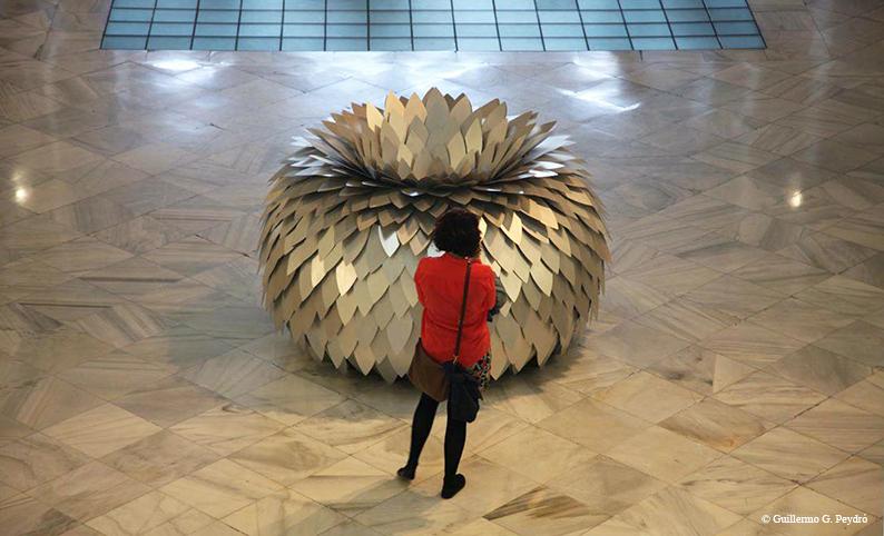 Architectomie#1 (2012) - Jeanne de Petriconi