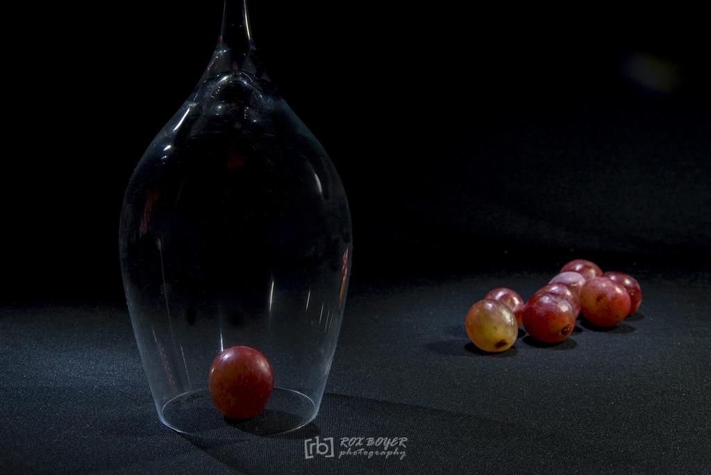 Protegido (2020) - Rox Boyer