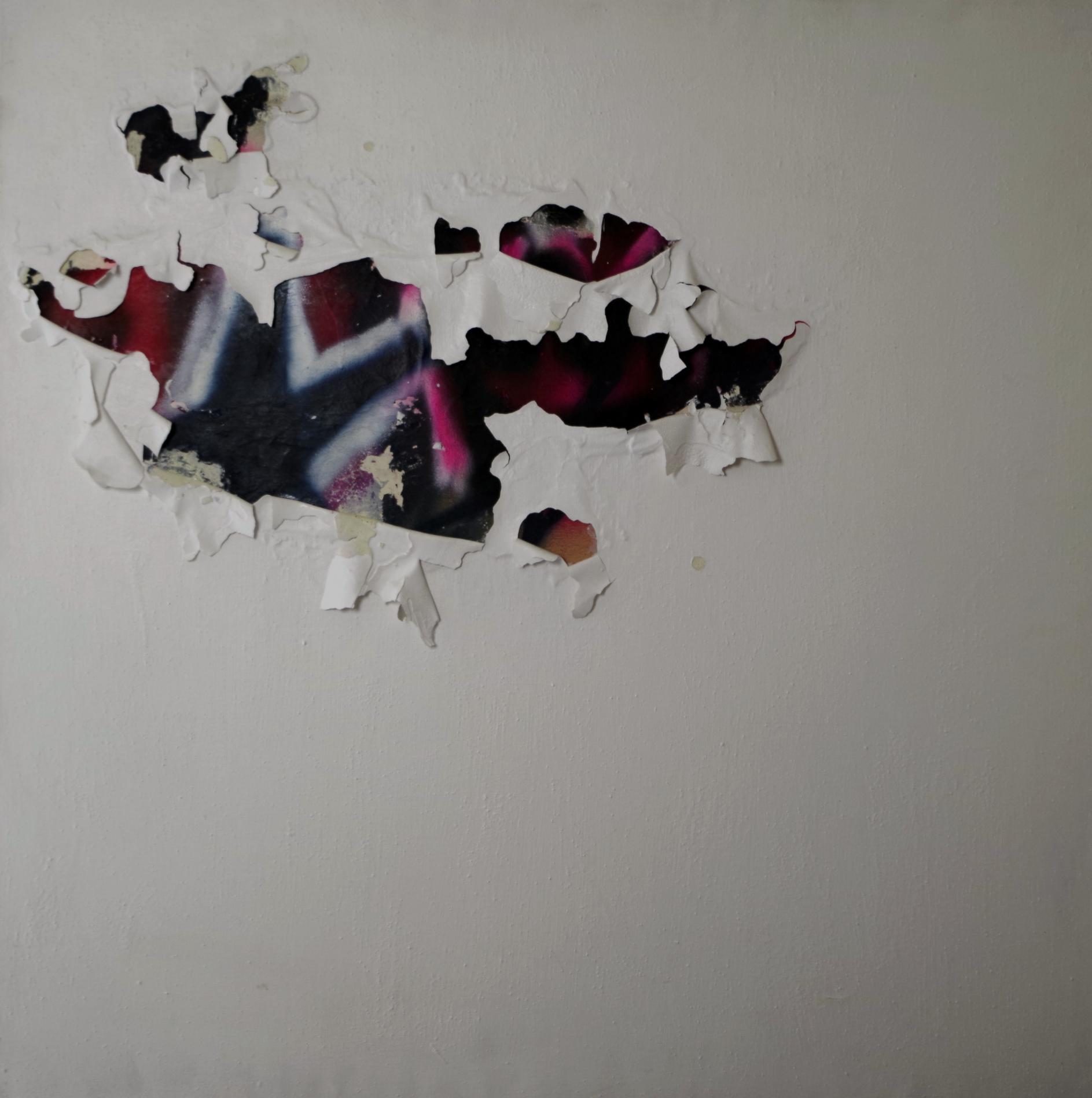 Intervencion del Blanco (2011) - Ivannia Lasso