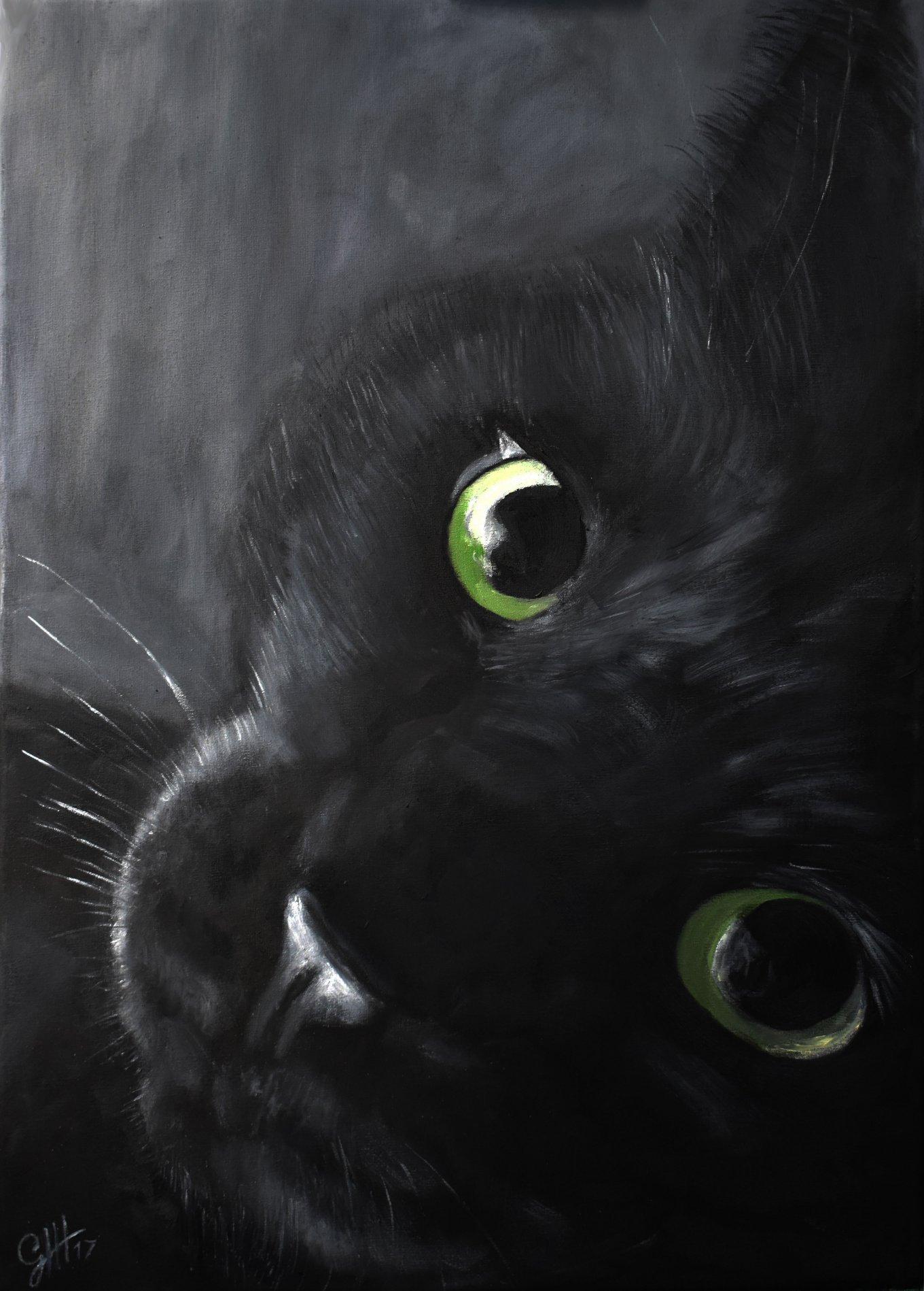 Gato negro (2017) - Gustavo Hernán Herrera