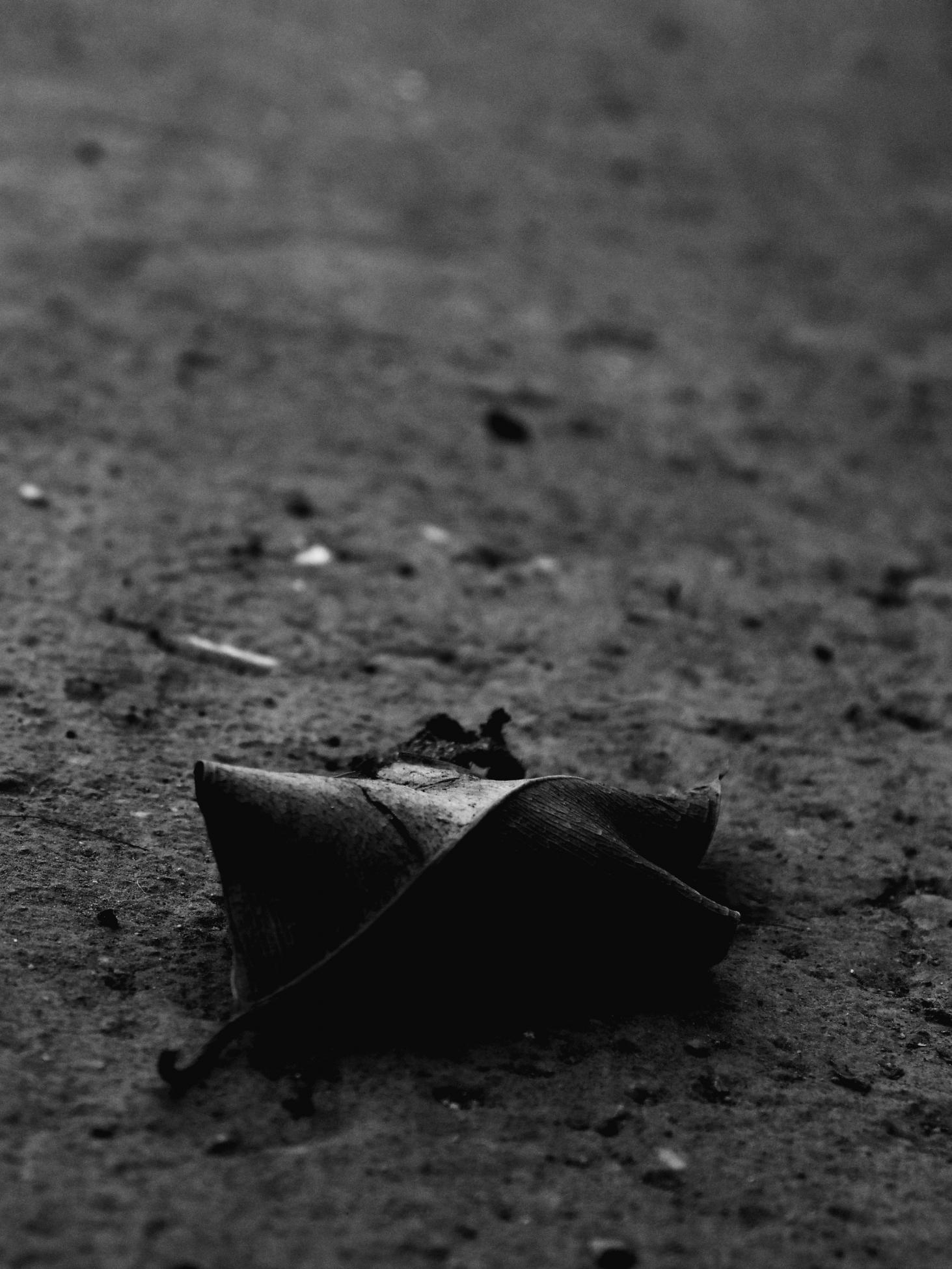 Remember the fallen (2017) - Carlos Rodolfo Escala Fernández