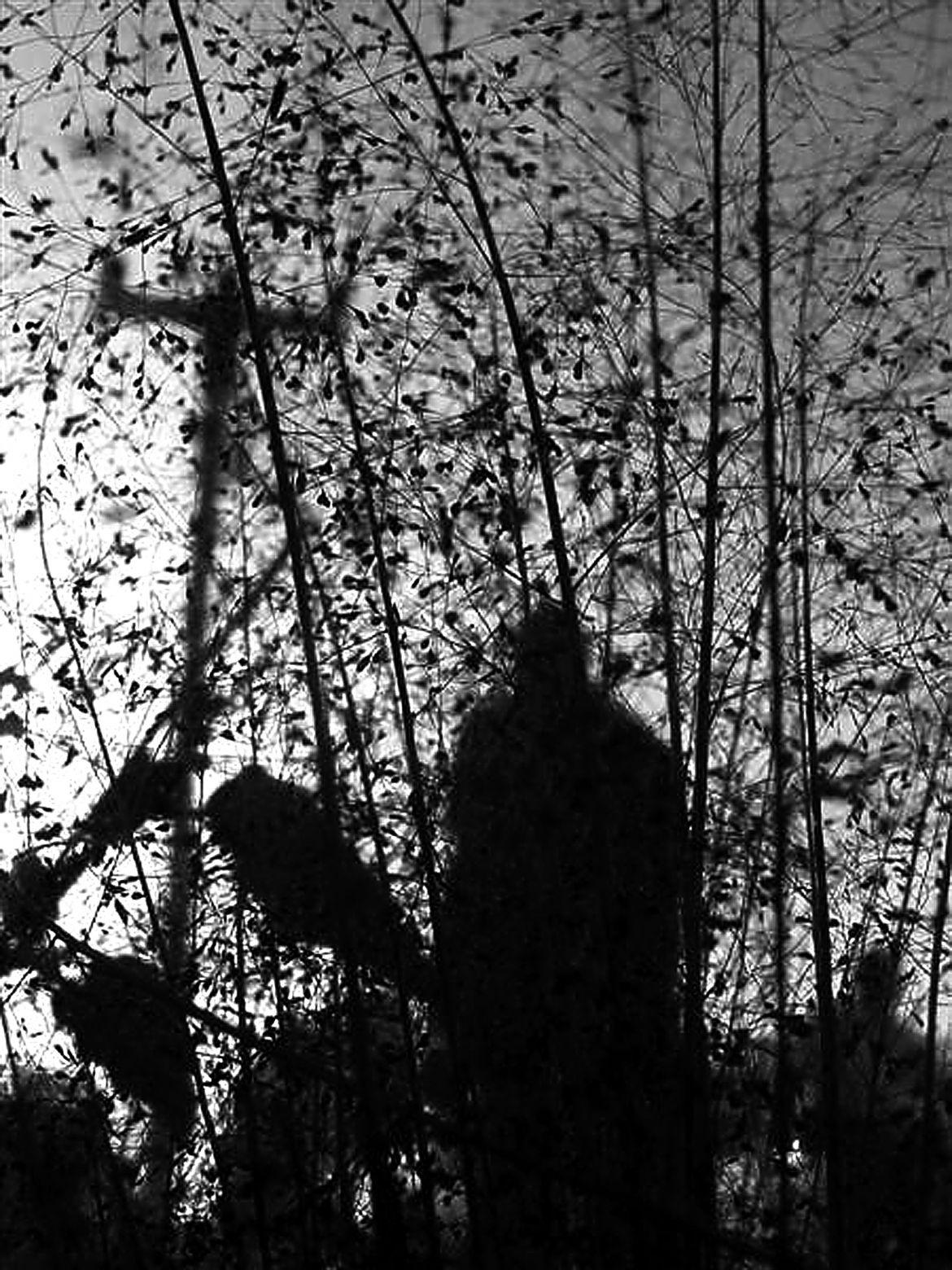 Al Alba (2019) - Yuri Limonte Hera