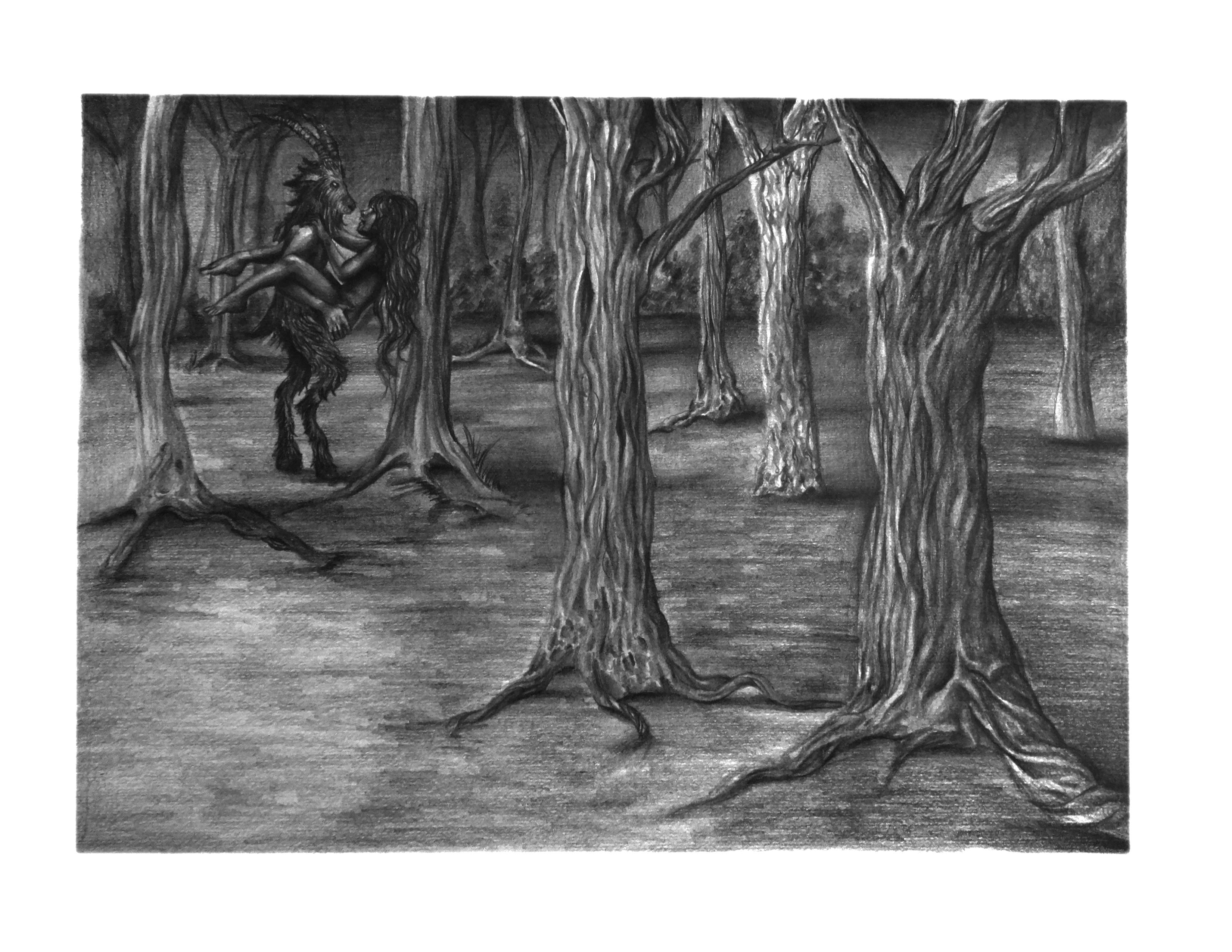 secretos del bosque (2019) - Kamila Sutcliff