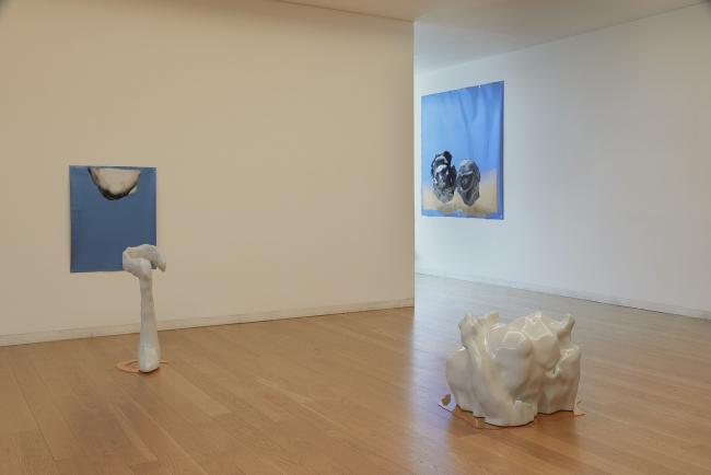 Vista de la exposición Novo Banco Revelação 2018, Museo de Serralves, Porto. fot. por Filipe Braga.