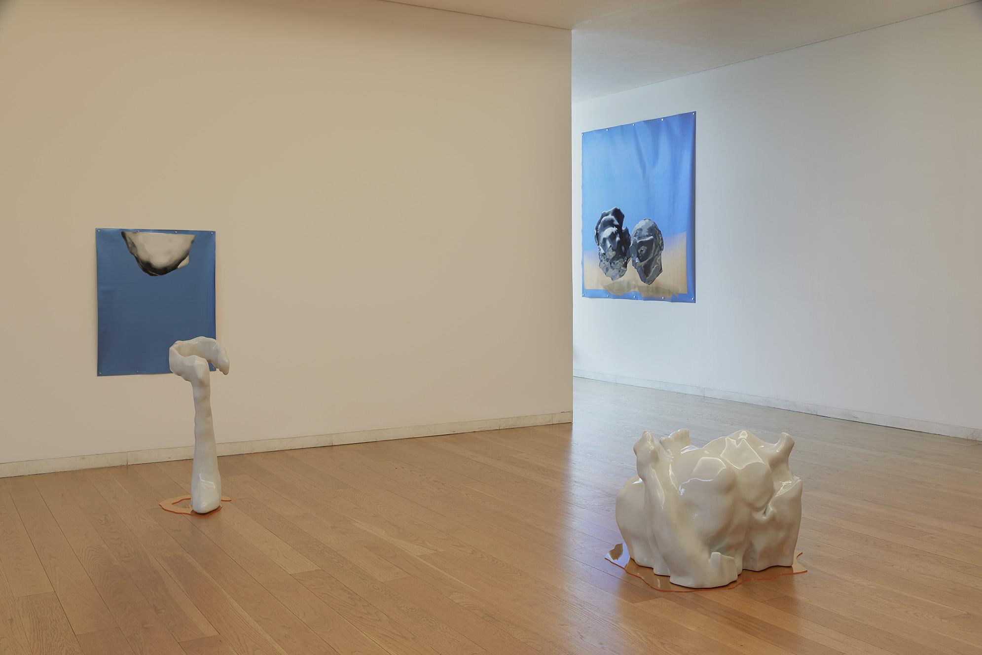Vista de la exposición Novo Banco Revelação 2018, Museo de Serralves, Porto. fot. por Filipe Braga (2018) - Carlos Arteiro