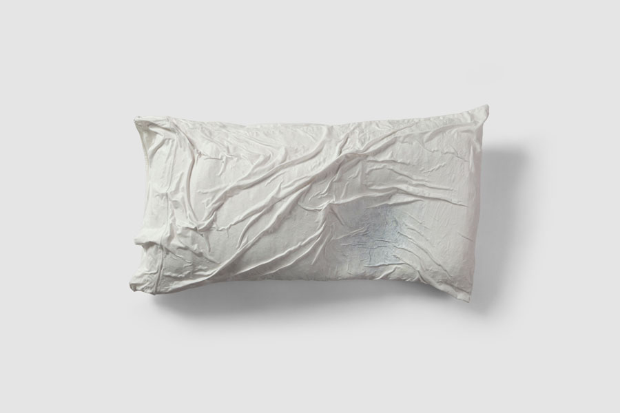 Pillow 1: DREAMING I FLY (2012) - Guillermo Del Valle De la Cruz - Del Valle