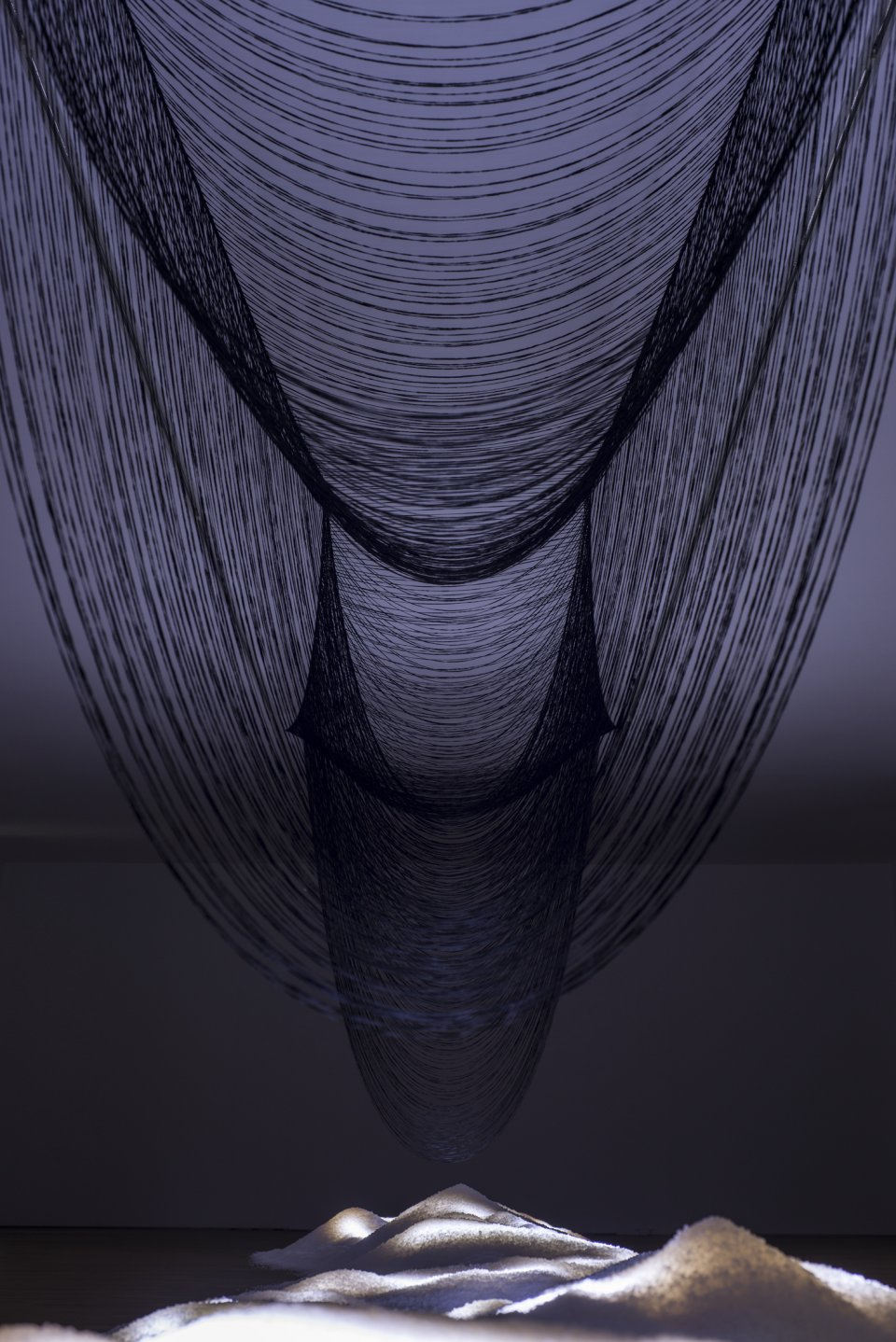 Urphänomen (2015) - Sara Coleman