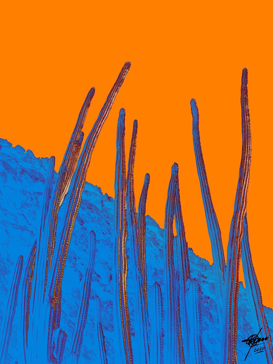 Antenas (2020) - Osvaldo Russo Salles - Digital y con Arte