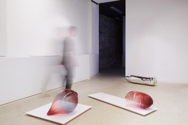 28 lapsus lingue - exhibition view