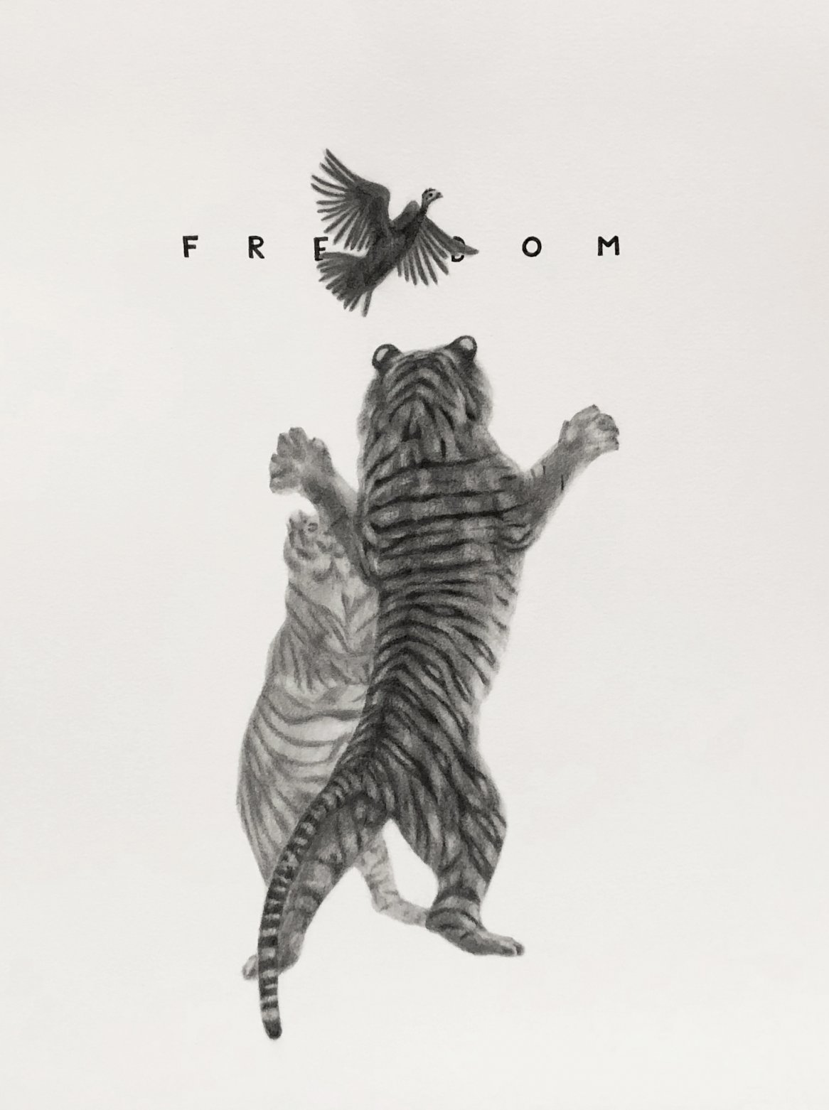 Freedom (2020) - Luis Simó