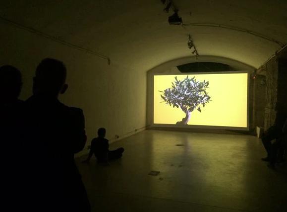 El Olivo (2010) - Claudio Zulian