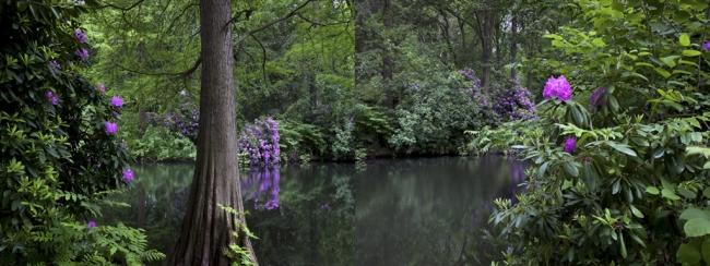 Tiergarten. Un jardín romántico alemán. Primavera foto nº 6