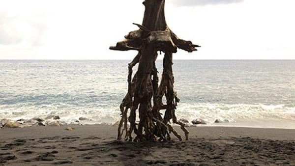 Black Sand Beach, 2011