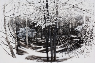 En el bosque 2, 2018. Acrílico sobre lienzo, 130 x 195 cm.