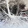 Het bos, 2018. Acrílico sobre lienzo, 180 x 180 cm.