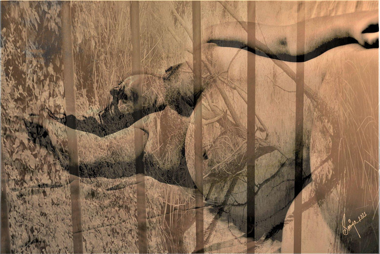 El secuestro (2021) - Soniya Amrit Patel - Soniya