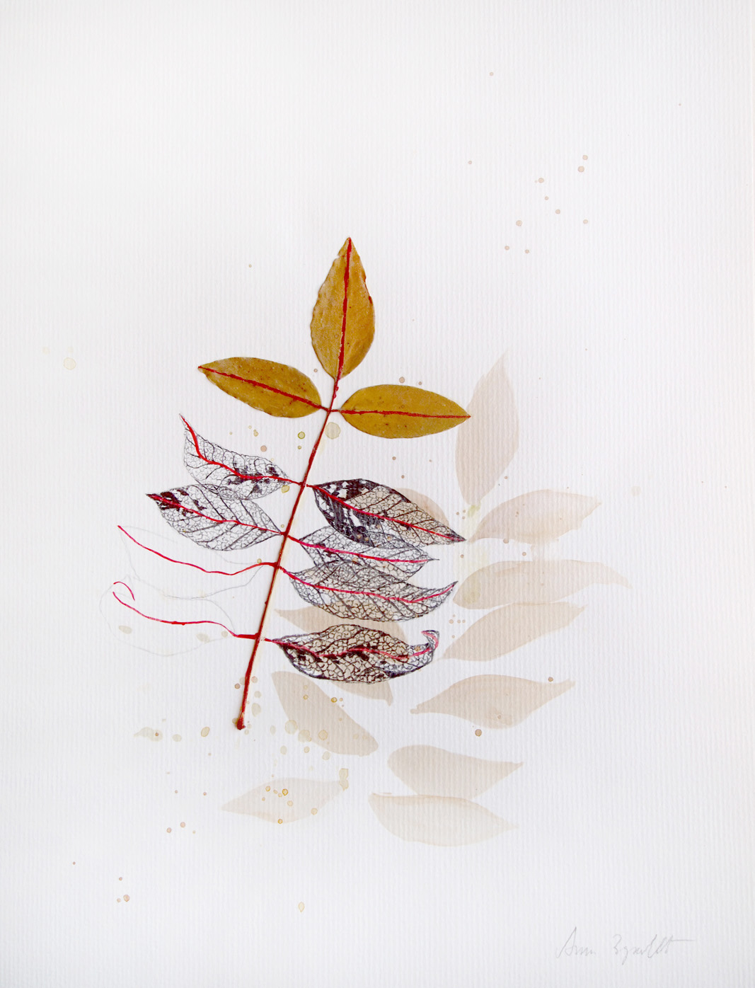 Hojas amarillas (2008) - Ana Zdravkovic