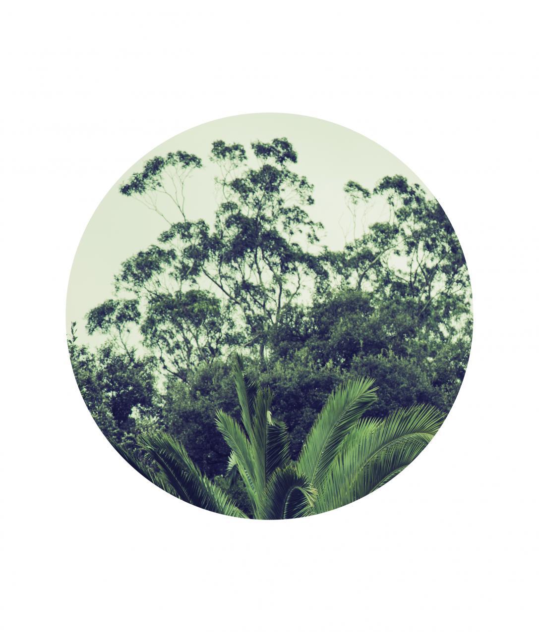 Pared (2018) - Helena Garay