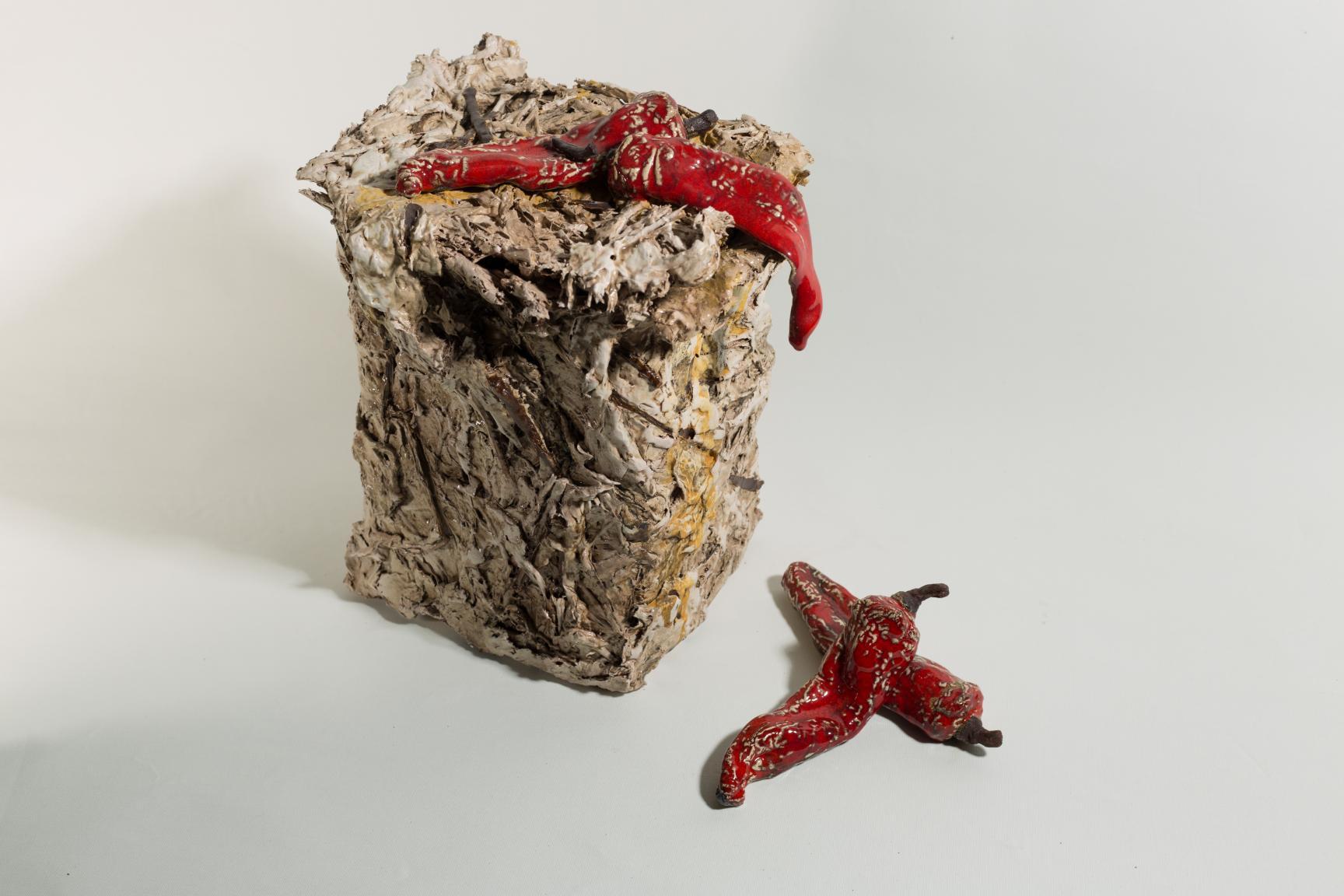 CAIXA MORTA PEBRERES (2014) - Juan Ramón Cortés