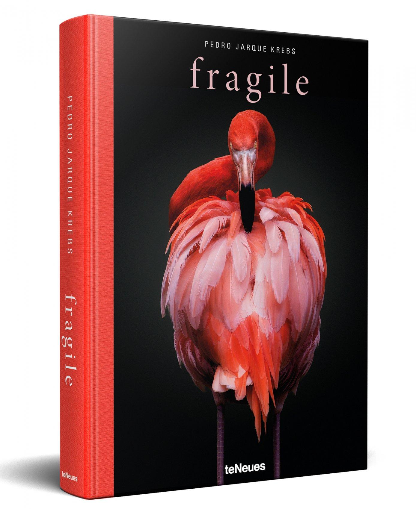 FRAGILE (2019) - Pedro Jarque