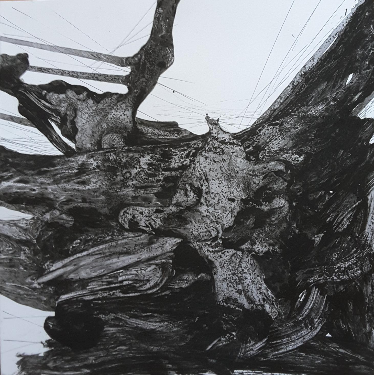 """""""Contra viento y marea"""" (2019) - Valeria Luccioni"""