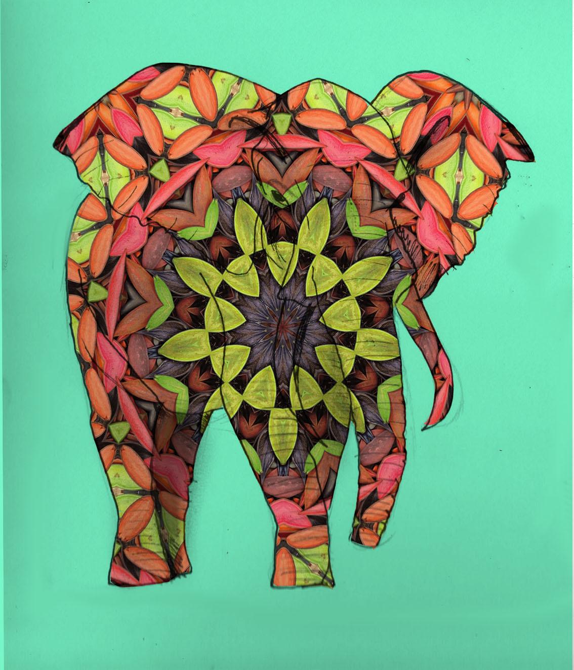 Elefante (2017) - Maria Ignacia Fresno
