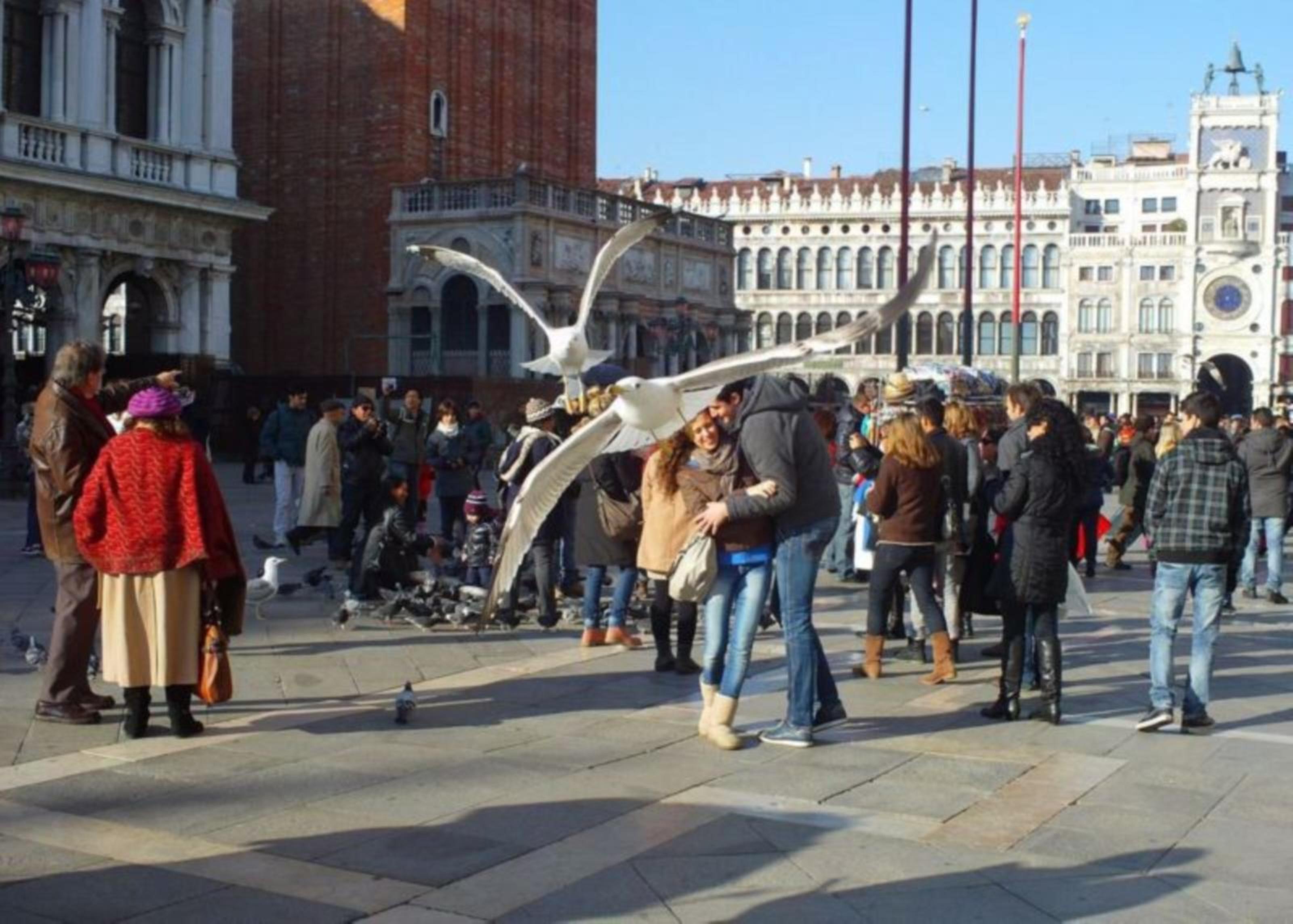 El amor en la Plaza San Marcos, Venecia (2011) - Liliana Durán Torreyes - Laura Edelstein