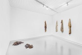 EXÚVIA, Filipe Cortez. Acervo - Arte Contemporânea, 2019