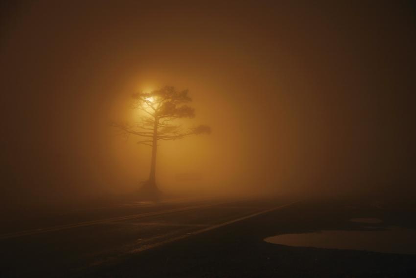 Nocturnos (2009) - Elizabeth Vinck Monroy