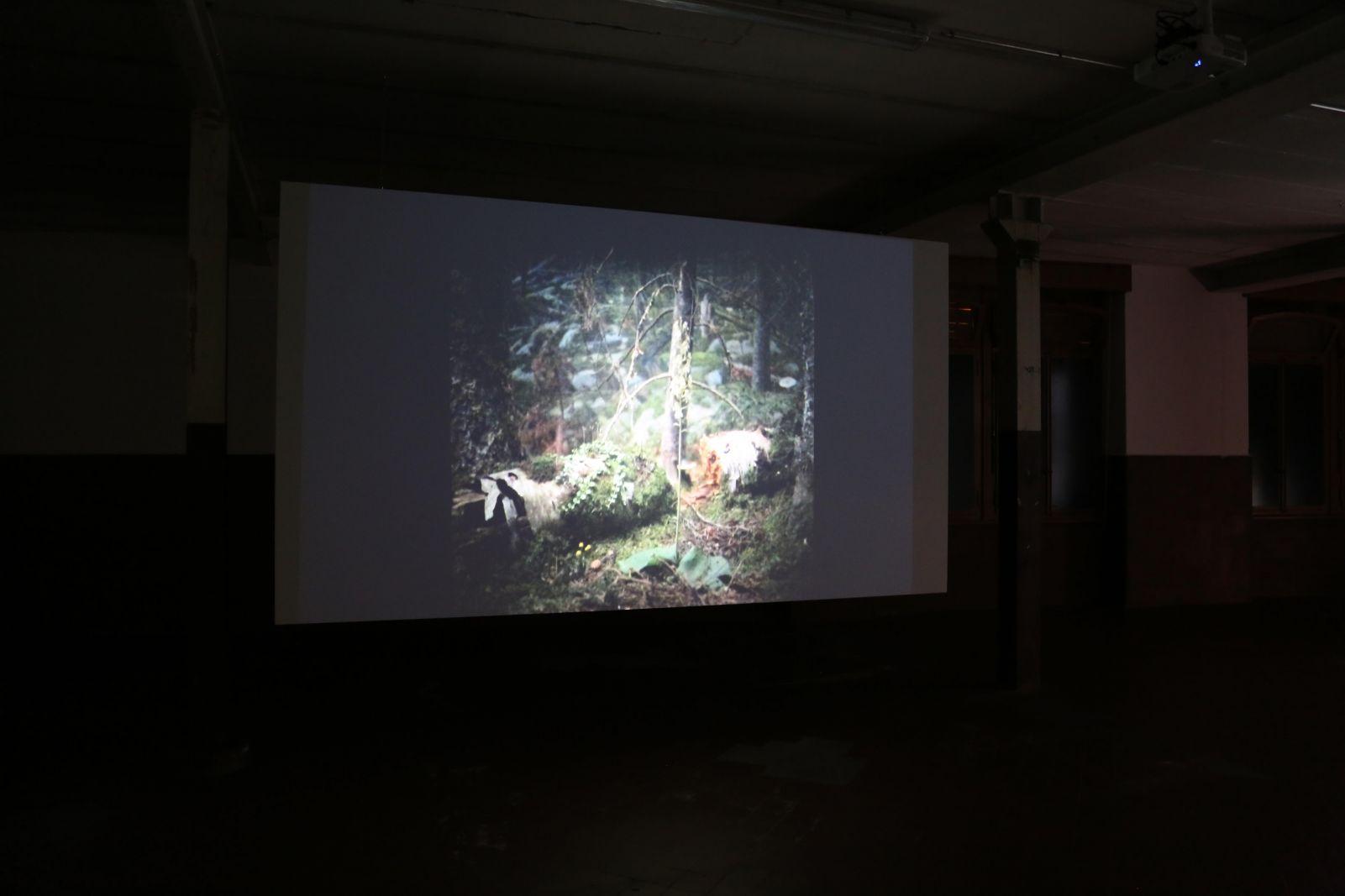 Glass_Scape Slideshow (2019) - Virginia Inés Vergara