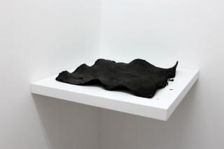 Sin Título, 2012, Tania Pérez Córdoba