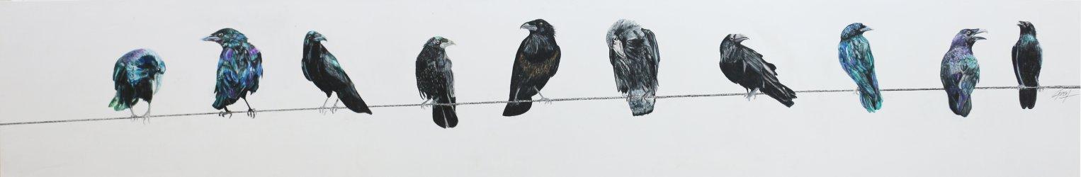 Diez en el alambre (2018) - Márgara Graf