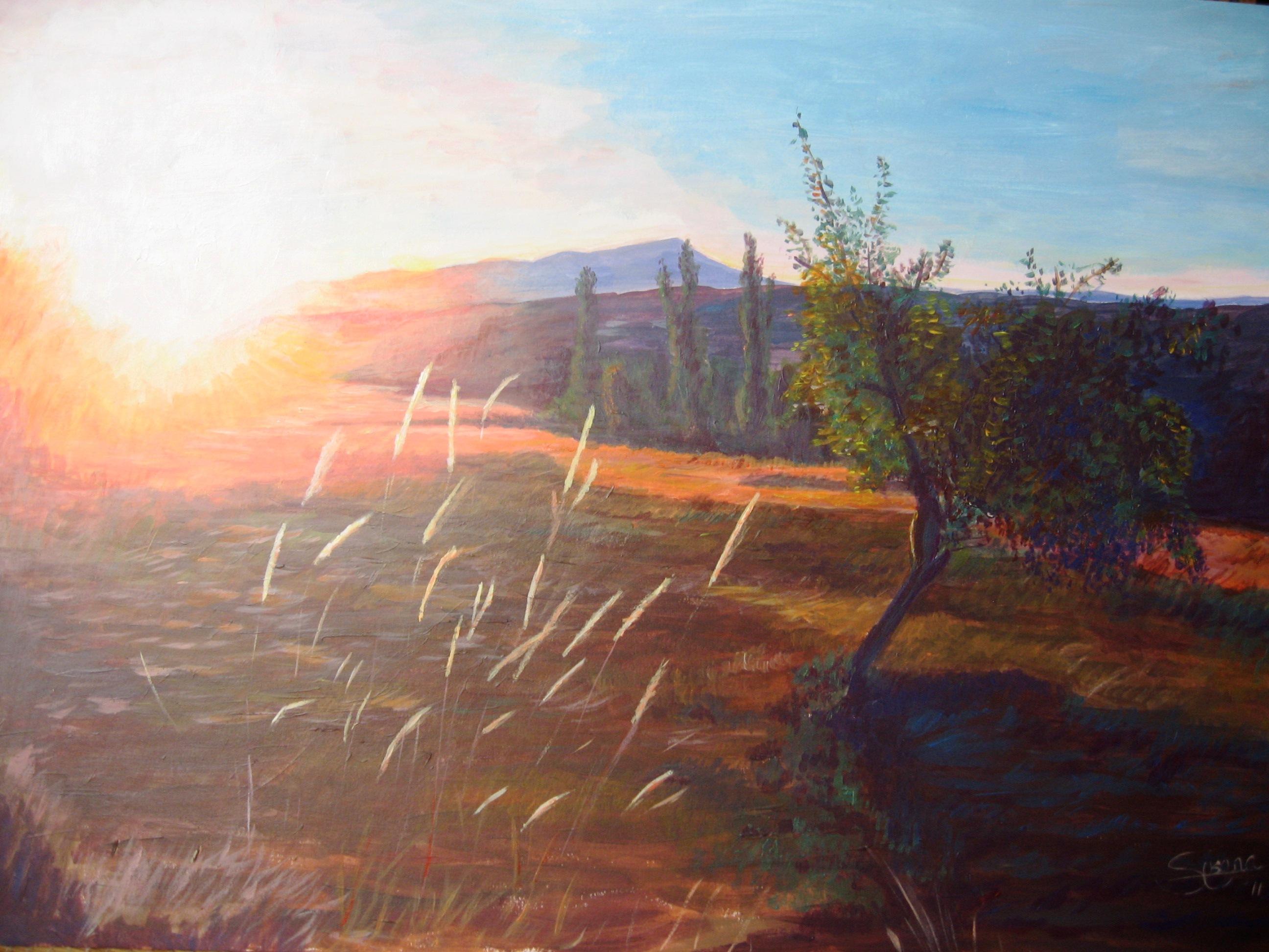 Atardecer en el campo (2011) - Alonso de Sousa