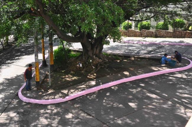 Zona rosa, acción en medios urbano, Tegucigalpa, agosto de 2010