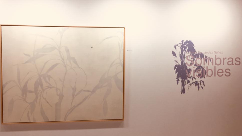 Exposición Sombras Visibles (2016) - Cristina Fernández  Núñez