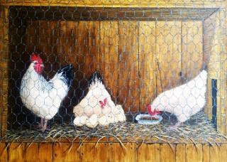 cajón de gallinas