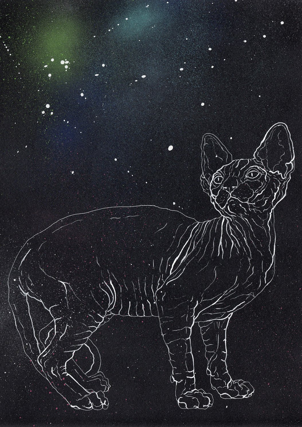 Pre Boreal Cat