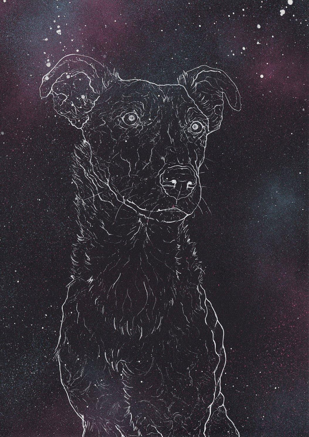 Constelados Neo Black Noise