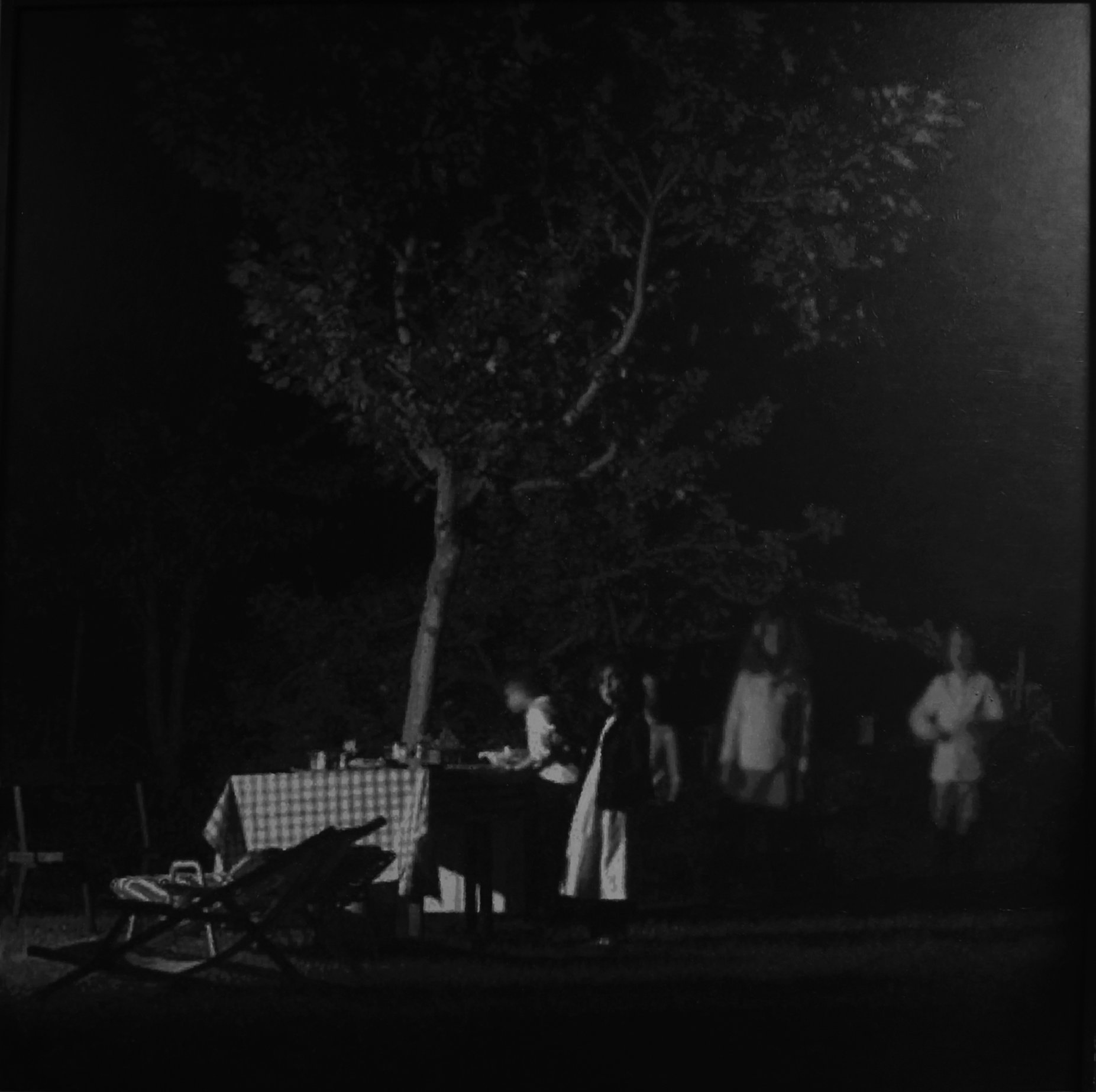 El arbol de Porfirio (2015) - Carlos Muro