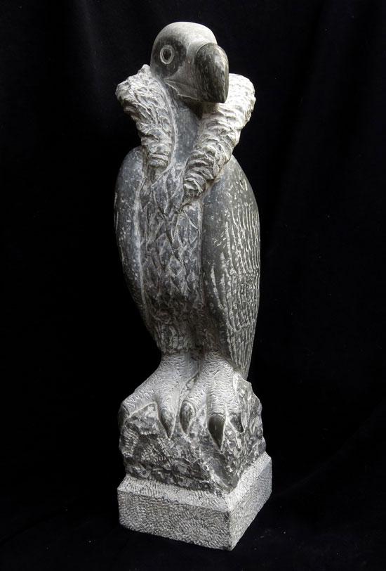 Buitre negro (2014) - Vega Bermejo Castelnau