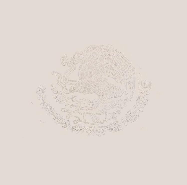 La region más transparente (v2) (2019) - Juan Caloca